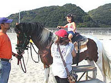 9月4日「ビックシャワー」で出張引き馬