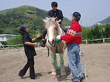 乗馬体験の日