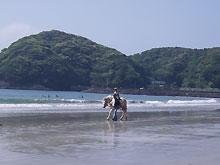 弓ヶ浜フェスタ2008