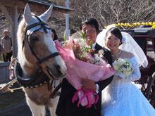 菜の花結婚式